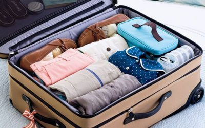 21 Best Travel Organizers for Organize Travelling in 2020 –  Updated Buyer Guide